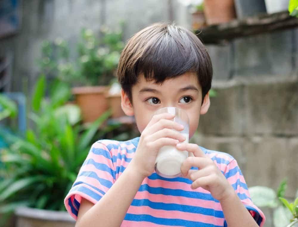 Tinggi dan Berat Badan Anak Dipengaruhi Asupan Protein Hariannya