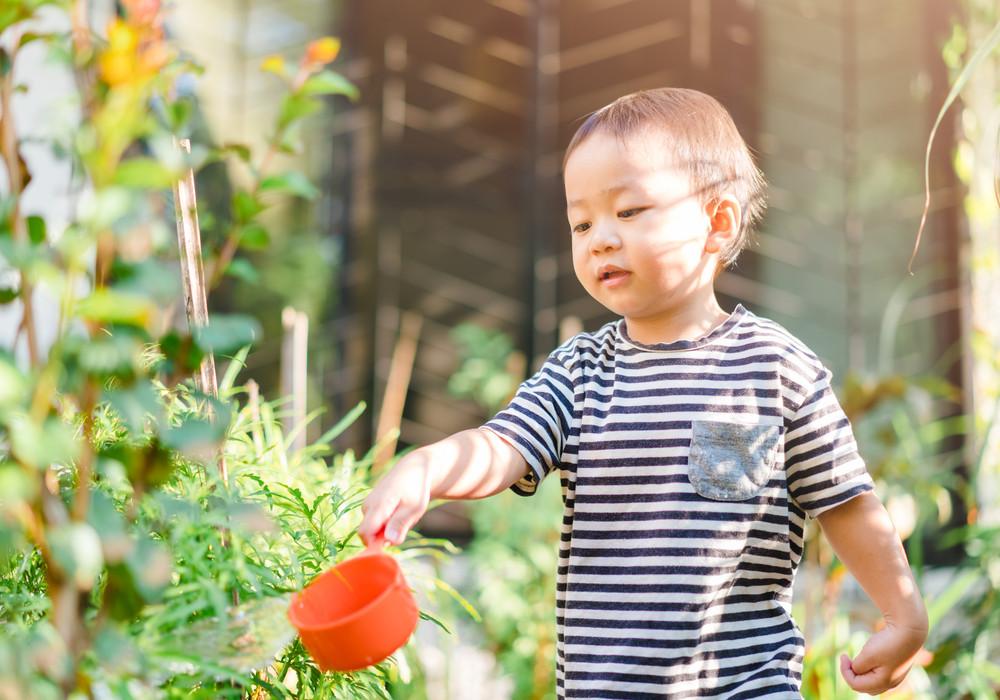 Dukung Pertumbuhan Optimal dengan Nutrisi Lengkap & Seimbang