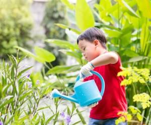Komunikasi Yang Tepat Untuk Anak Susah Makan